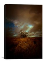 Shropshire landscape with tree and electrical ski, Canvas Print