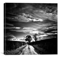 Lane of Shropshire in Autumn, Canvas Print
