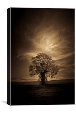 Autumn tree with moon in sepia, Canvas Print