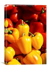 Peppers of Thailand, Canvas Print