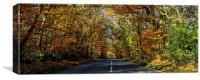 Autumn Straights, Canvas Print