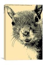 Squirrel Lithograph, Canvas Print