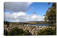 A stone wall beside Llyn Celyn , Canvas Print