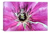 Flora, Canvas Print