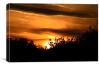 silhouette sunset, Canvas Print