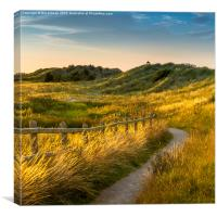 Talacre path, Canvas Print