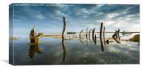 Thornham Stumps, Canvas Print