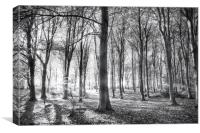 Forest of whispering winds, Canvas Print