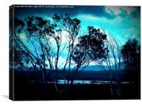 Dark Blue in Glencoe, Canvas Print