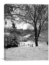 Snow Days, Canvas Print