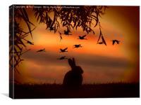 Sunset rabbit, Canvas Print