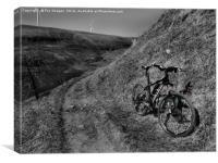 Hillside trail, Canvas Print