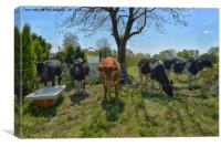 Countryside animals, Canvas Print