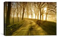 Sunrise in birtle lancashire, Canvas Print