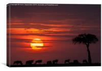 Masai Mara Sunset, Canvas Print
