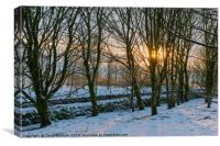 Peak District | Winter trees in Castleton, Canvas Print