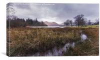 The Stream To Catbells, Canvas Print