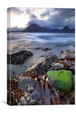 Low Tide on Loch Scavaig, Canvas Print