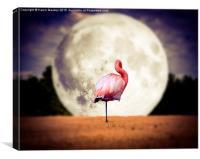 Flamingo Moon, Canvas Print