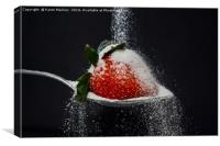 Sugar Shower, Canvas Print