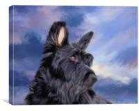 Expression Is Everything -  Scottish Terrier, Canvas Print
