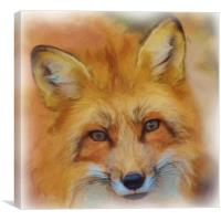 Fox Face Watercolour Painting, Canvas Print