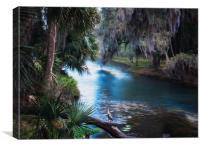 Florida Tropical River Paradise, Canvas Print