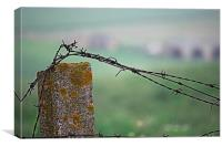 Barbed wire in the countryside 2