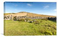 Dartmoor Tor, Canvas Print