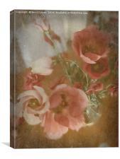 Lisianthus, Canvas Print