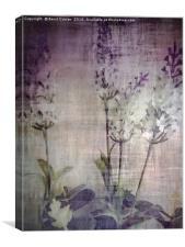 Lavender Love, Canvas Print