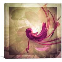 Dancing Fuchsia , Canvas Print