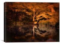 Autumnal Colours, Canvas Print