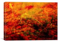 Poppies and corn, Canvas Print