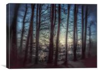 Misty Winters  Forest , Canvas Print