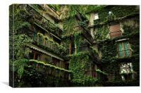Ivy Building, Canvas Print