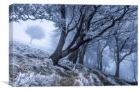 Hoar frost in the mist. , Canvas Print