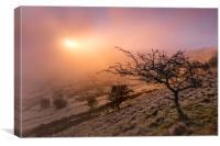 Swallow Tor sunrise , Canvas Print