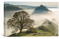 Chrome tree , Canvas Print