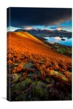 Skelgill Bank first light , Canvas Print