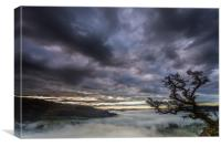 Crooked Tree dawn, Canvas Print