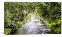 Mountainous creek, Canvas Print