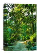Cemetery in park, Canvas Print