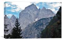 Jalovec, Canvas Print