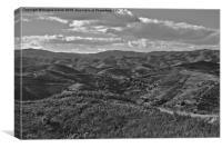 Mountain Paths , Canvas Print
