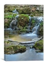 Cascades and bamboos in a peaceful creek, Canvas Print