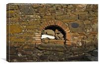 Antique stone oven , Canvas Print