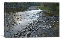 Stone River Crossing, Canvas Print