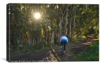 Forest Cycling Journey, Canvas Print