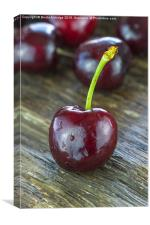 Sweet cherry, Canvas Print